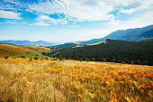 Bright hills and picturesque scene of the alpine valley.