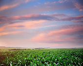 Rural scene with colored clouds.