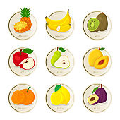 Tropical fruits vector illustrations set