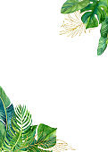 Tropical watercolor illustration with leaves and flowers.