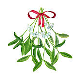 Mistletoe, watercolor botanical illustration, hand-drawn. Mistletoe bouquet isolated on white background. For your projects, invitations, cards, patterns, banners, posters and more.