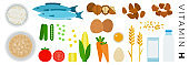 Vitamin H foods vector flat icons set with nuts, milk, vegetable.