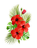 Red hibiscus flowers and palm leaves in a tropical arrangement
