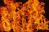 Blazing fire flame background and abstract, Flame detail for background