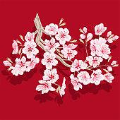 Beautiful flowers cherry blossom. Sakura flowers.