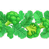 broccoli vector pattern