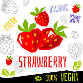 Fresh strawberry berry berries fruits organic vegan food vector hand drawn illustrations
