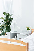 hospital ward with bed, plants and wooden table in clinic