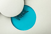 blue fern leaf in round geometric hole on white paper