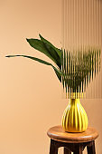 green leaves of plant in yellow vase isolated on beige behind reed glass