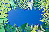 top view of green paper exotic leaves on blue background with copy space