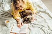 high angle view of beautiful young woman reading book while lying in bed with scottish fold cat