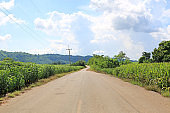 Country road to the mountain in thailand.
