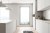 Loft white kitchen interior, island