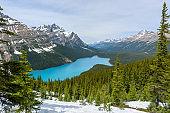 Panoramic view of Peyto Lake in Springtime, Banff National Park, Alberta, Canada