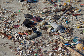 Garbage pollution on the beach