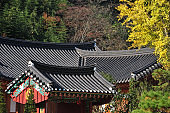 Tiled roof of the Korean temple