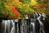 Autumn leaves waterfall