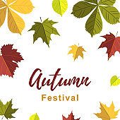 Autumn design. Vector illustration. Space for text