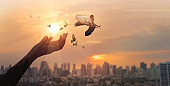 Hands of woman praying and free bird enjoying nature on city sunset background, hope concept.