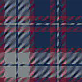 Tartan plaid pattern background. Seamless striped check plaid graphic in dark blue, red, and grey for flannel shirt, blanket, throw, upholstery, duvet cover, or other modern fabric design.