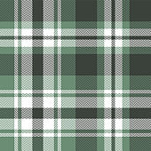Green plaid pattern vector background. Seamless tartan check plaid in green and white for flannel shirt, poncho, blanket, throw, or other modern fabric design. Herringbone pixel texture.