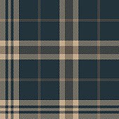 Tartan check plaid pattern. Seamless dark plaid vector background in blue and brown for menswear flannel shirt, blanket, sofa cover, or other modern fabric design.