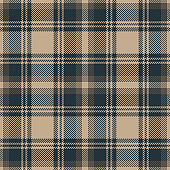 Seamless plaid pattern vector background. Dark brown and blue tartan check plaid for autumn or winter flannel shirt, blanket, upholstery, or other modern home or fashion textile design.