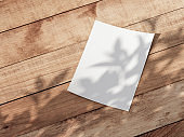 Realistic White sheet of paper Mockup on wooden table with shadows from plant