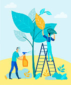 Men Cultivate Trees with Chemicals. Fight Pests.