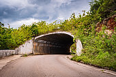 Entry/ Entrance/ Entryway/ Exit of a dark tunnel on countryside roadway/ street. Opening to underground passage way