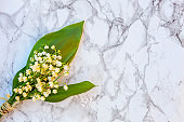 Lily of the valley or may-lily on marble background