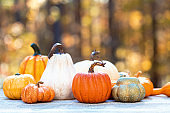 Variety of pumpkins outside in autumn