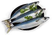 Unfrozen chub mackerels with greens on the black dish