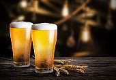 Glasses of light beer with barley at bar. Two glass of beer with wheat on wooden table