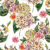 Watercolor Vintage Floral Seamless Pattern with Blooming White Hydrangea and wildflowers