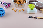 dried food in a bowl for pets, leash, toys and poop bags