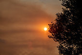 Australian bushfire: Smoke from bushfires covers the sky and glowing sun barely seen through the haze. Catastrophic fire danger, NSW, Australia