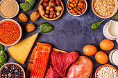 Sources of healthy protein - meat, fish, dairy products, nuts, legumes, and grains