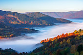 beautiful autumn landscape with valley fog