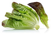 Fresh red lettuce isolated on white