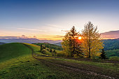 carpathian countryside at sunset in springtime