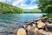 beautiful summer scenery near the mountain lake