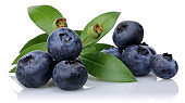 Unripe and ripe blueberries with leaves isolated