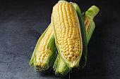 Grains of ripe corn on dark background