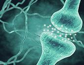Neurotransmitters, neurons transmitting information.