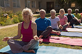 Group of senior people performing yoga in the park