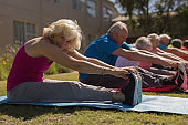 Group of senior people exercising in the park