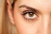 Macro shot of female brown eye