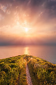 path near the sea at dreamy sunset